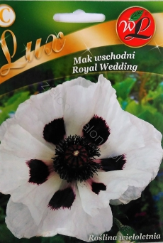 Mak wschodni Royal Wedding